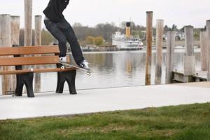 Premier-x-Nike-SB-Dunk-Low(6)